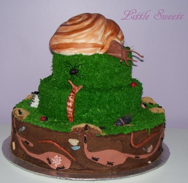 Cupcake Decorating Ideas Insects : Bug Cake Cake - Cupcake Decorating Pinterest