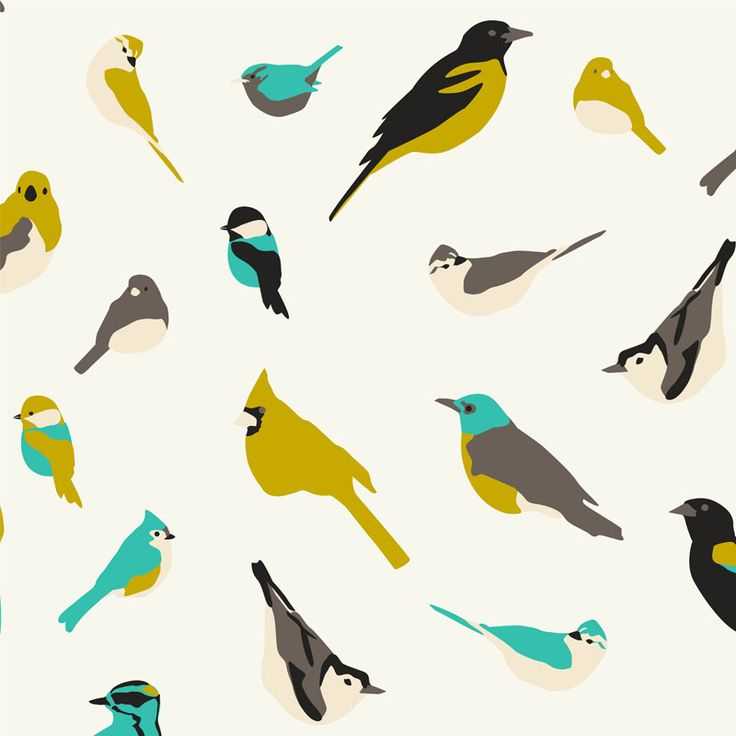 Backyard Birds in Aqua, Large