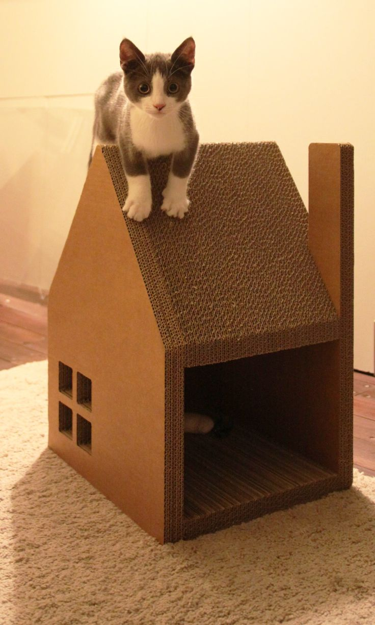 19 spectacular cat houses made entirely out of cardboard. Black Bedroom Furniture Sets. Home Design Ideas
