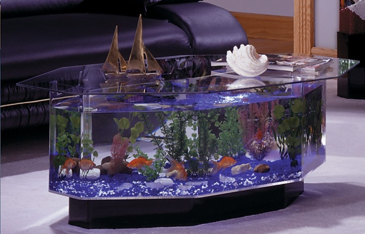 Fish Tank Coffee Table Aquariums Pinterest
