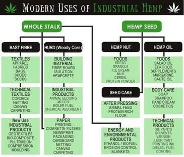 Many of Hemp's Uses