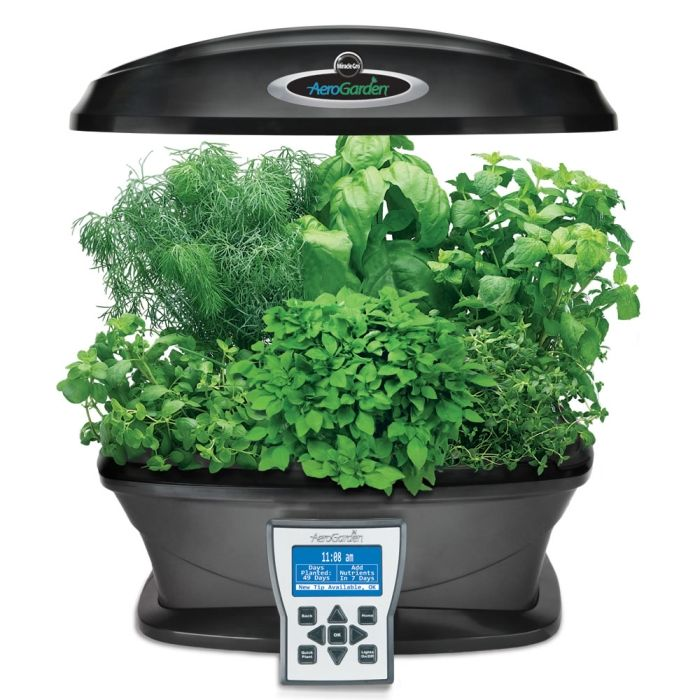 Countertop Hydroponics : ... countertop hydroponic system grows seven plants simultaneously under