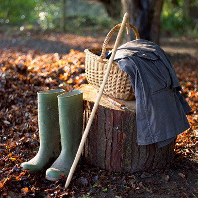 Basket and wellington boots in woods: Foraging