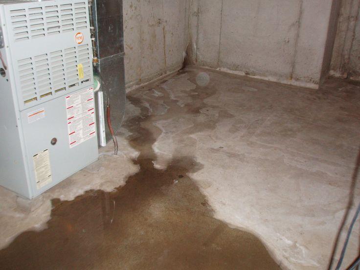 water seepage basement waterproofing warning signs pinterest