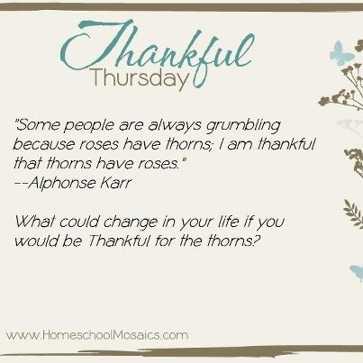 Thankful Thursday: What could change in your life if you would be Thankful for the thorns?