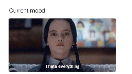 My current mood. | Funny things | Pinterest