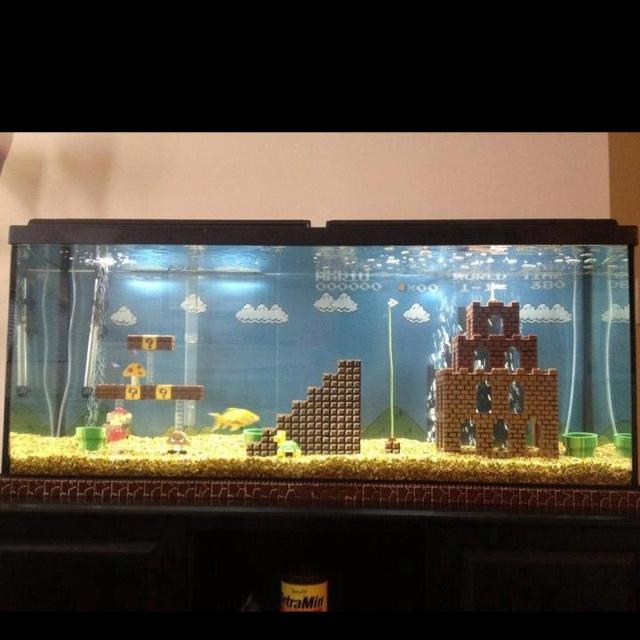 Pretty cool fish tank idea Ideas for salt water tank Pinterest