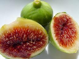 figs - Google Search   Food   Pinterest