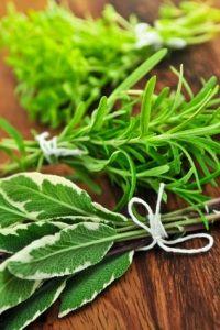 Info on drying herbs