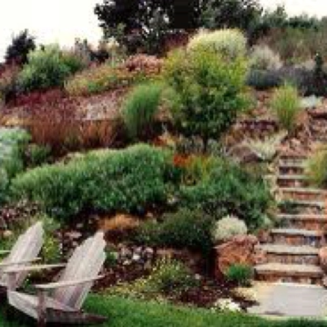Native plant with stone retaining wall garden plants for Retaining wall plants landscaping
