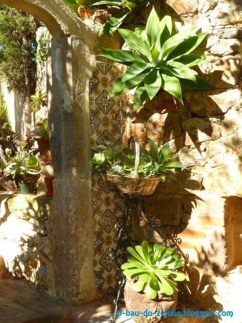 ideias originais jardim : ideias originais jardim:canto das suculentas