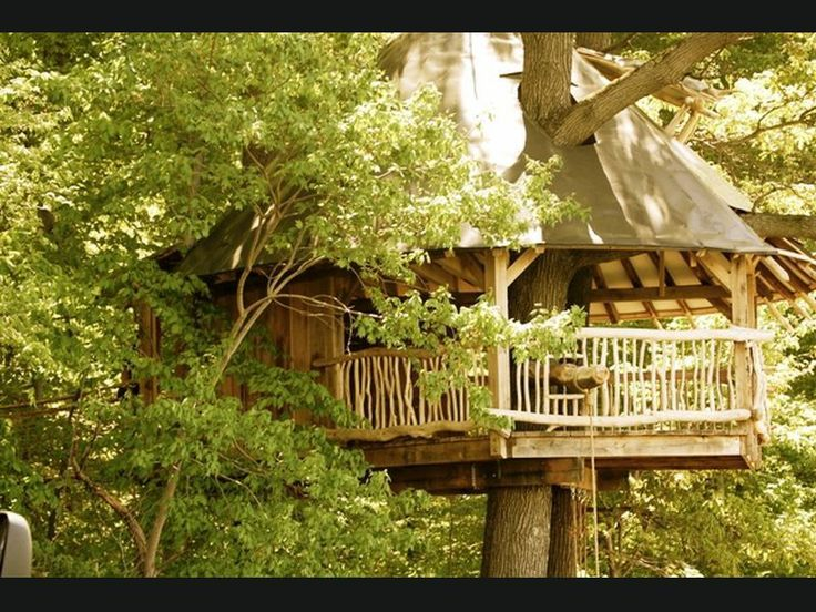 tin roof tree house ideas pinterest