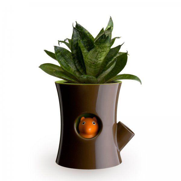 Bb blog log squirrel flowerpot wonderful things for Cooledeko de