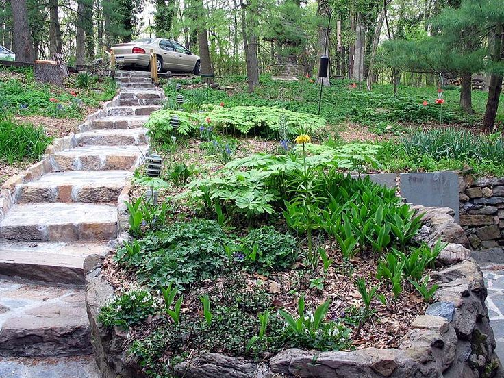 Slope garden gardening pinterest - Ideas for gardens on a slope ...