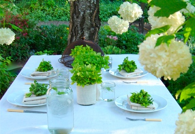 Inexpensive centerpieces with green herbs like oregano or even mint. Or anything that would match with the soup.