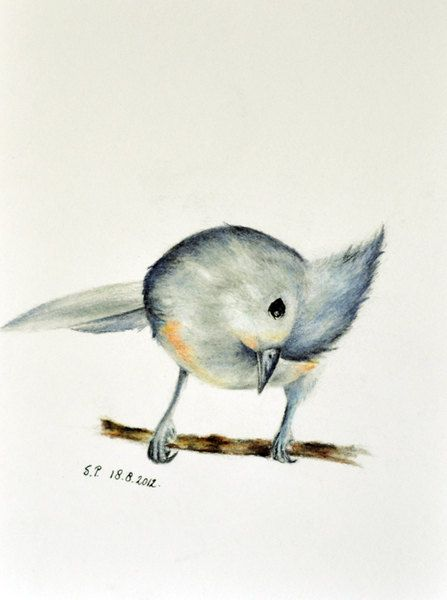 Winter bird - Original colored pencil drawing 5.5 x 8 inch