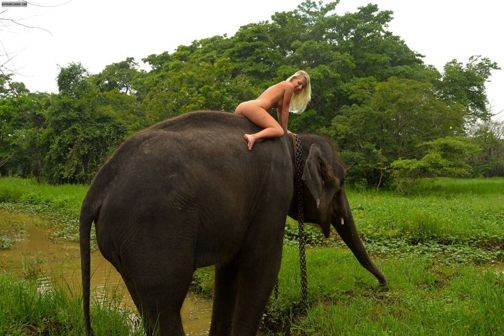 Nude Women Riding Elephants