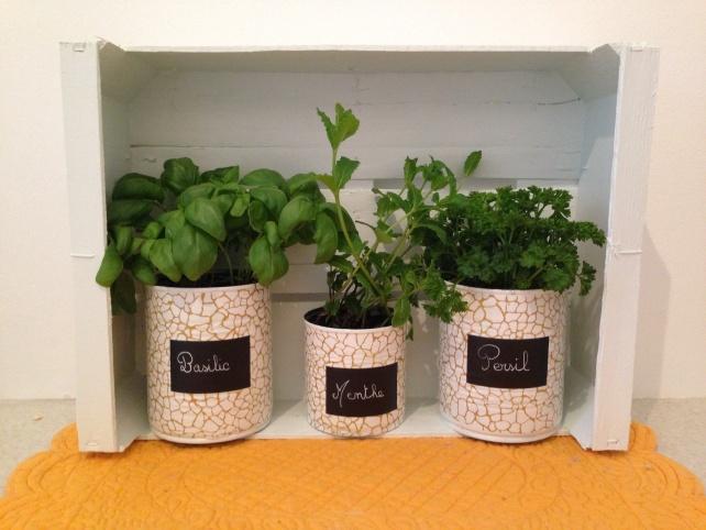 Pot pour herbes aromatiques  DIY  Pinterest