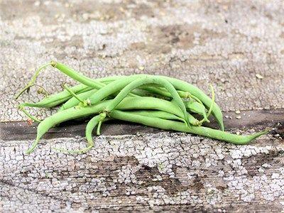 black valentine bush bean