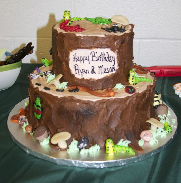 ... Birthday Party - Critter cake made by Strossner's Bakery (Greenville