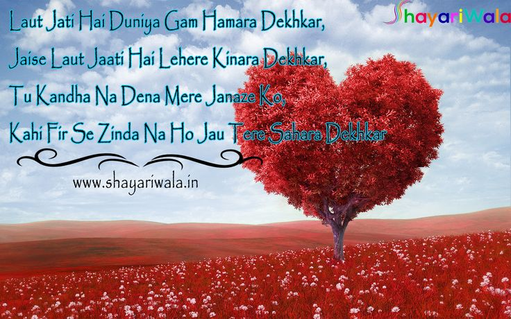 english shayari of valentine day