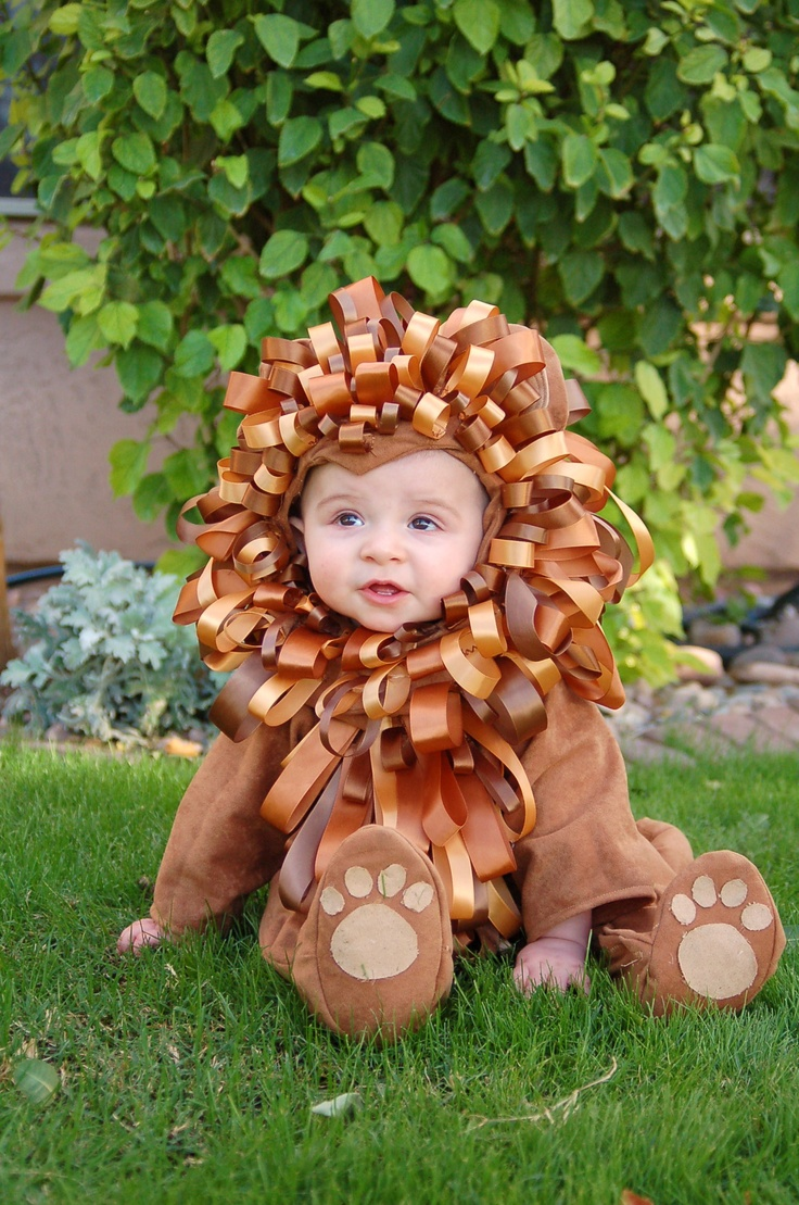Homemade lion halloween costume - photo#10  sc 1 st  animalia-life.club & Homemade Lion Halloween Costume
