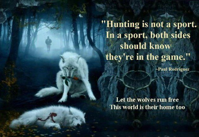 IMAGINE a world run by PSYCHOPATHS Pt I | END Trophy Hunting NOW
