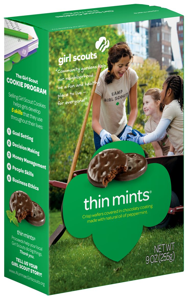 Kaitlyn's AP English Blog: TOW #20 Thin Mints Box