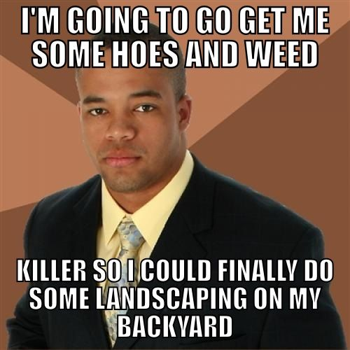 Best successful black man meme ever. lmao funny successfulblackman
