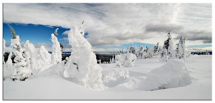 The wind sculpts AMAZING creations on Two Top Mountain every winter. This popular snowmobile ride offers great views and fantastic winter scenery. Best of all, it is a comfortable ride from West Yellowstone, Montana or my favorite spot, Elk Lake Resort!