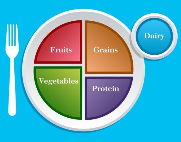Food+Plate+Printable New Food Pyramid My Plate | Health+Fitness ...