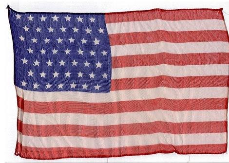 50 stars on flag vine