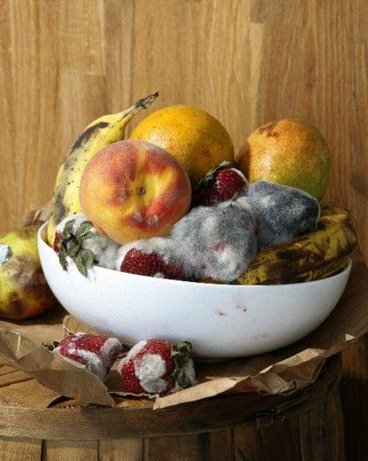 MoMA | New Photography 2010 | Roe Ethridge | Old Fruit
