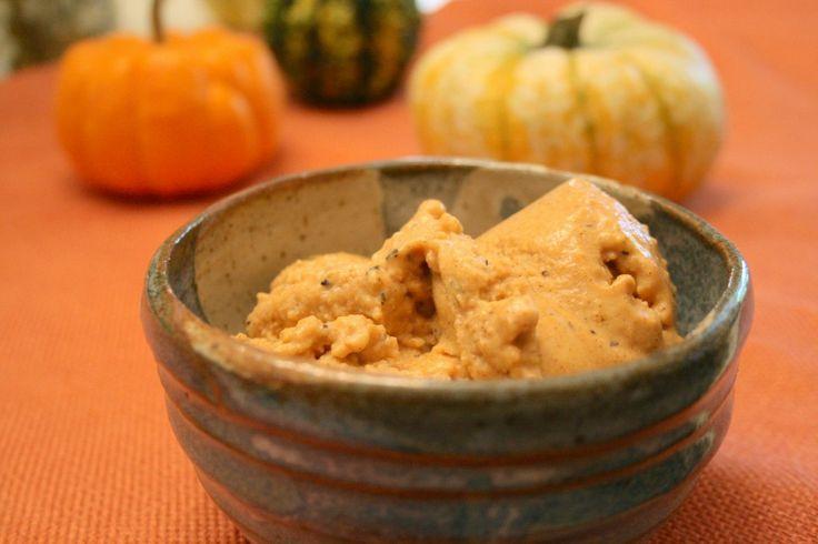 Pumpkin Pie Ice Cream - paleo, gluten free, dairy free, egg free, no ...