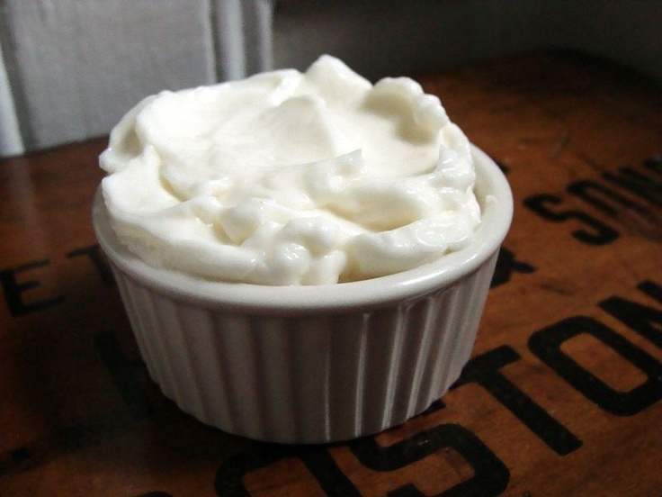 Homemade Mayo (low-fat version) - I plan on replacing the canola oil ...