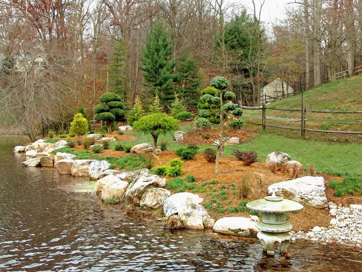 Pin By Magi Love On Japanese Gardens Bonsai Pinterest