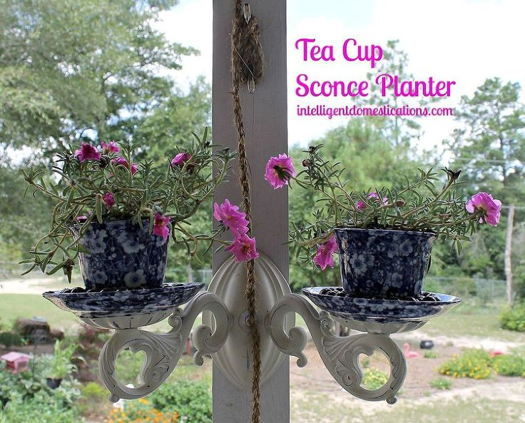 Tea Cup Sconce Planter Repurpose Project - We repurposed this electric ...