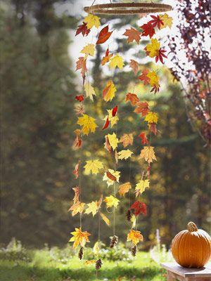 Wind Fall leaves ≈≈