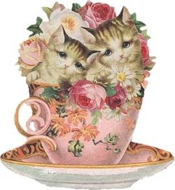 Teacup cats