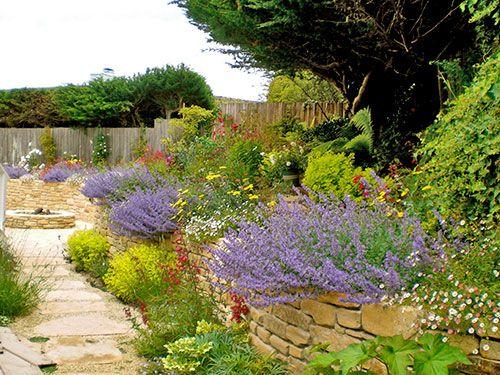 Free California Landscaping Classes Small Backyard Ideas