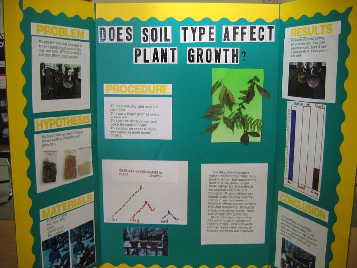 Science fair project science pinterest for Soil 6th grade science