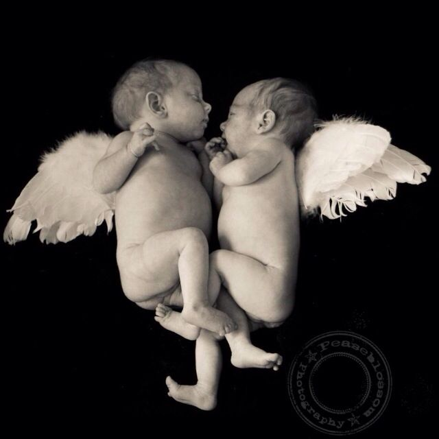 Twin Baby Angel Pictures White newborn twin baby