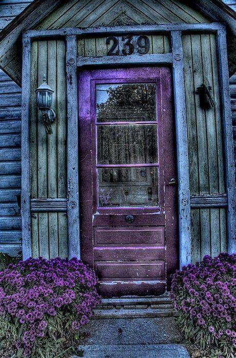 ❥ purple door on blue