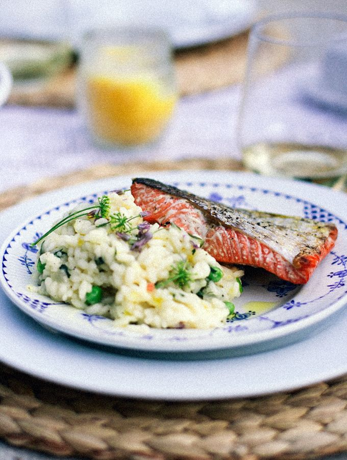 herbed risotto and simple salmon | bird is the word