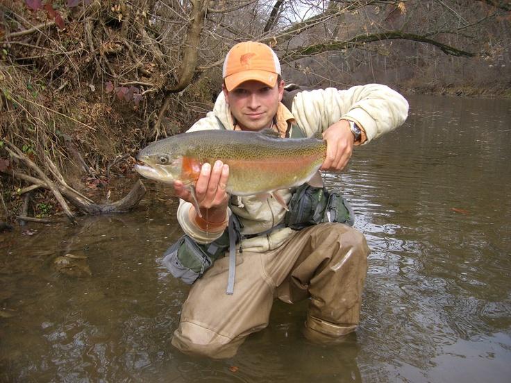 Virginia fly fishing fishing stream pics pinterest for Fly fishing virginia