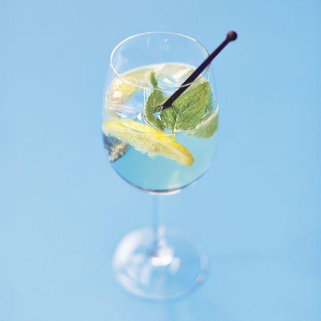 Elderflower Mint Prosecco Cocktail Recipe — Dishmaps