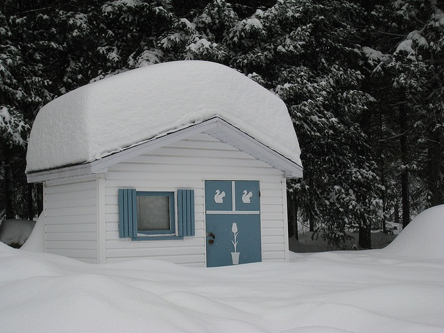 Little Garden Shed in the Snow