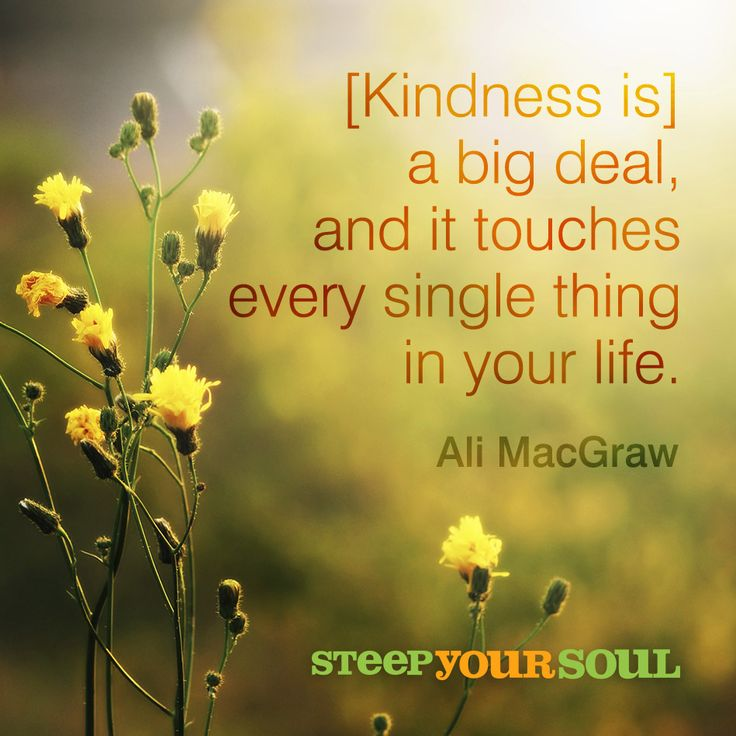 [Kindness is] a big deal, and it touches every single thing in your life.  Ali MacGraw