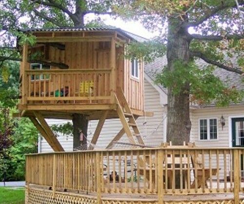 like the metal roof  Cabins & treehouse  Pinterest