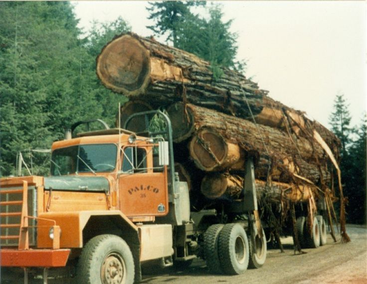 Load of logs classic logging pinterest